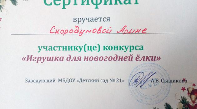 Скородумова Арина 2017