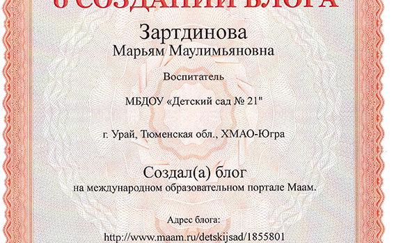 Создание блога Зартдинова 2019