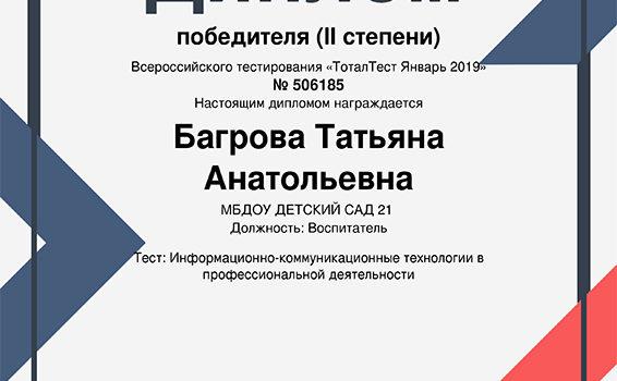 Тестирование Багрова 2019
