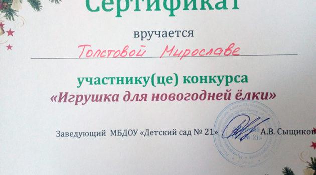 Толстова мирослава 2017