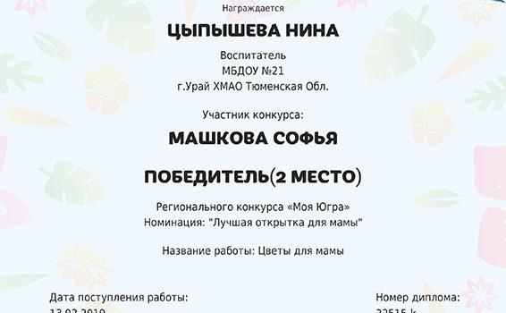 Цыпышева Машкова 2019