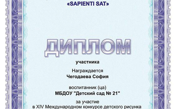 Чегодаева 2017