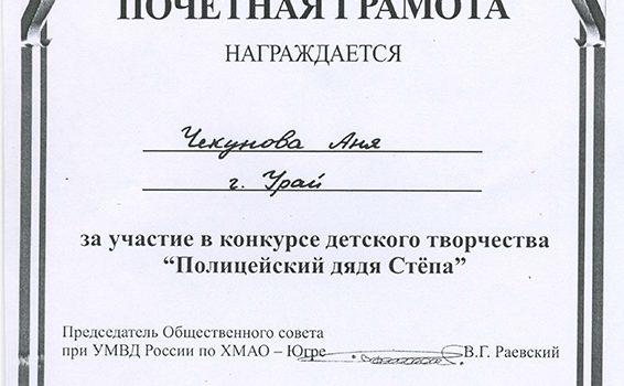 Чекунова Аня 1