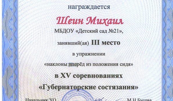 Шеин Михаил 2016