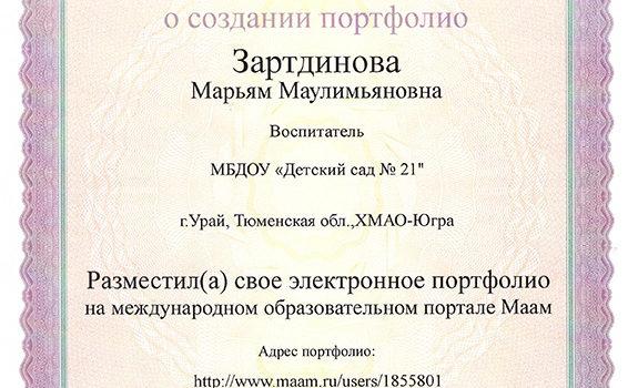 Электрооное портфолио Зартдинова 2019