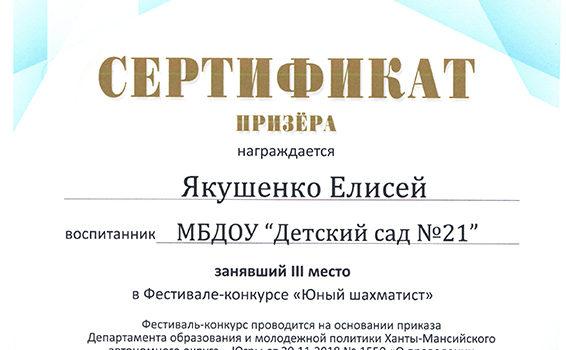Якушенко Е 3 место Шахматист 2018