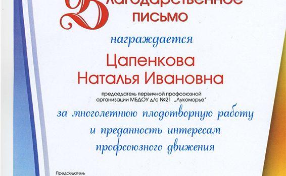 благодарность Цапенкова