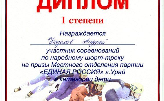 диплом партии единая россия