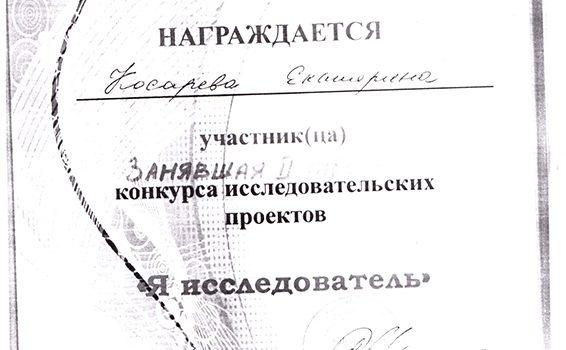 косарева екатерина 2 место 2017