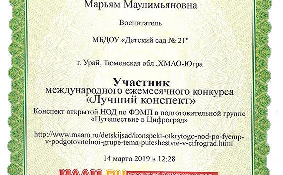 маам конспект Зартдинова 2019