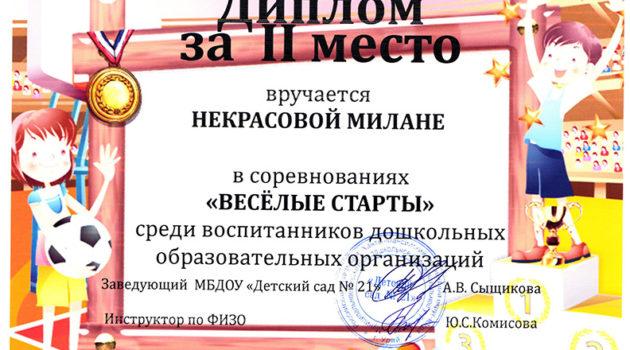 некрасова2019