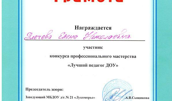 педагог ДОУ 2013
