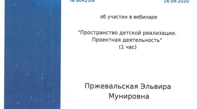 сертификат ПРОСТРАНСТВО ДЕТСКОЙ РЕАЛИЗАЦИИ2020