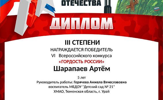 шарапаев артем2019