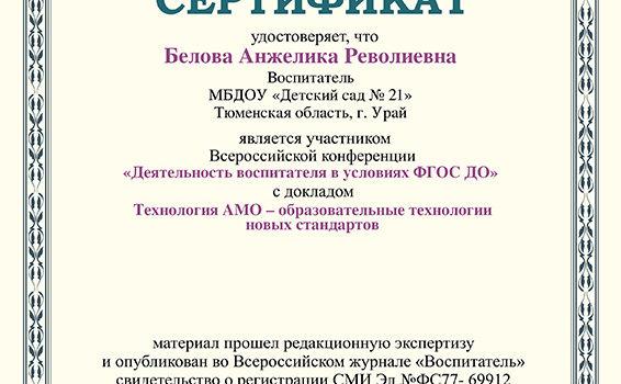 Сертификат конференция 2017