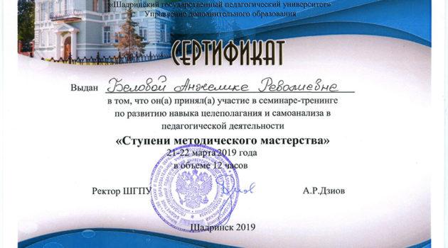 Сертификат ступени 2019