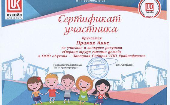 СЕРТИФИКАТ Примак Анна