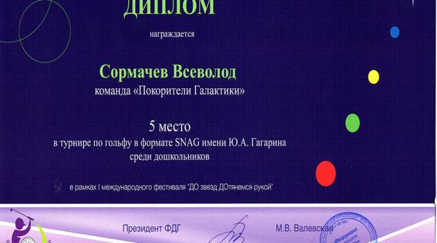 Диплом Сормачев Всеволод 2021