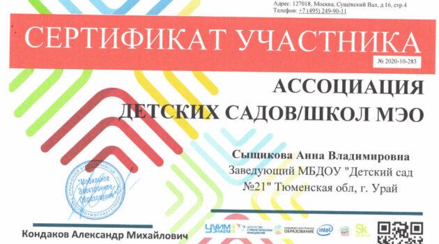 сертификат МЭО